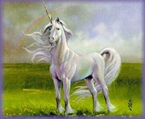 Unicorn-1copy